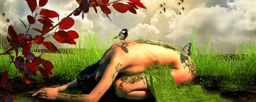 the-nature-photomontage-photomanipulation